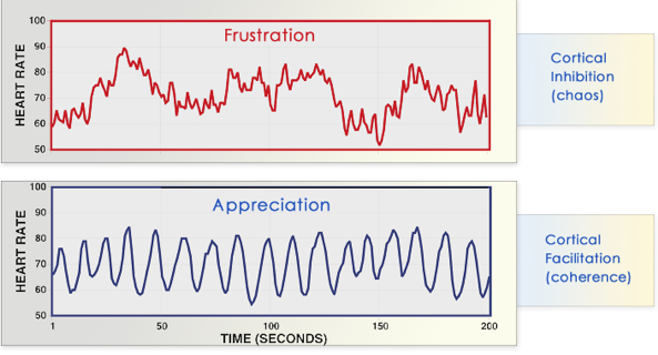 Heart rate patterns for frustration and appreciation.